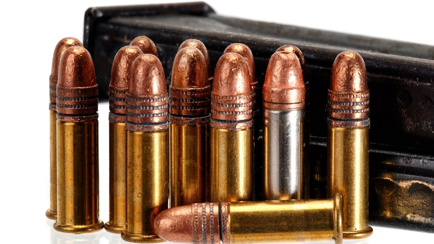Rimfire ammo with a magazine.