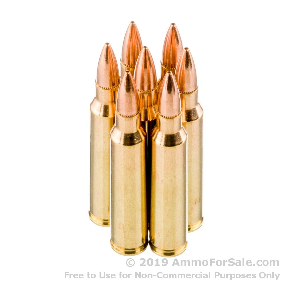 1000 Rounds of 55gr FMJBT  223 Ammo by PMC