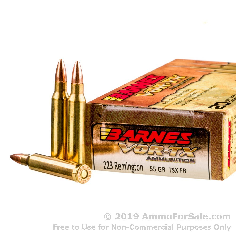 20 Rounds of Discount 55gr TSX .223 Ammo For Sale by Barnes