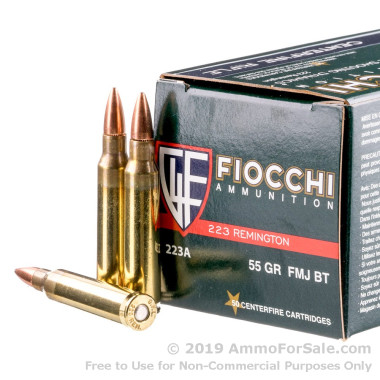 1000 Rounds of 55gr FMJ .223 Ammo by Fiocchi