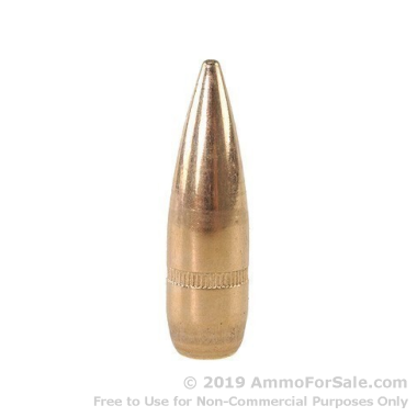 308 Win 147gr FMJ Bullets by Lake City