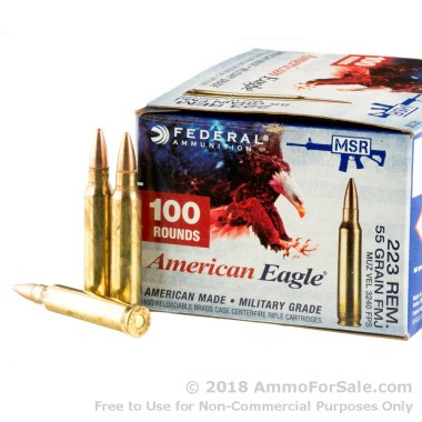 100 Rounds of 55gr FMJ .223 Ammo by Federal