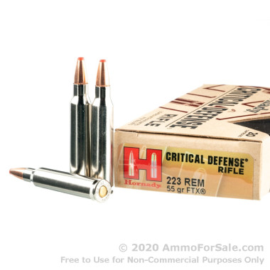 20 Rounds of 55gr FTX .223 Ammo by Hornady