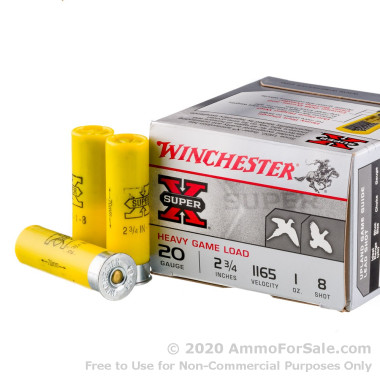 250 Rounds of 1 ounce #8 shot 20ga Ammo by Winchester Super-X