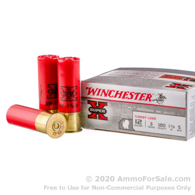 10 Rounds of  #5 shot 12ga Ammo by Winchester