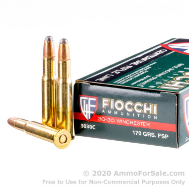 20 Rounds of 170gr FSP 30-30 Win Ammo by Fiocchi