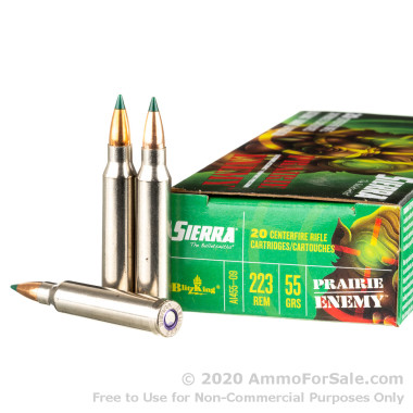 20 Rounds of 55gr BlitzKing .223 Ammo by Sierra