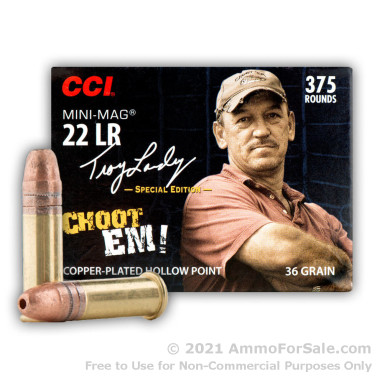 375 Rounds of 36gr CPHP .22 LR Ammo by CCI