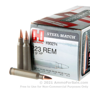 50 Rounds of 55gr HP .223 Ammo by Hornady