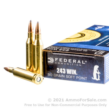 200 Rounds of 80gr SP .243 Win Ammo by Federal