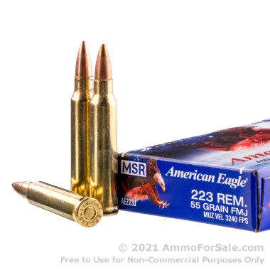 20 Rounds of 55gr FMJ .223 Ammo by Federal