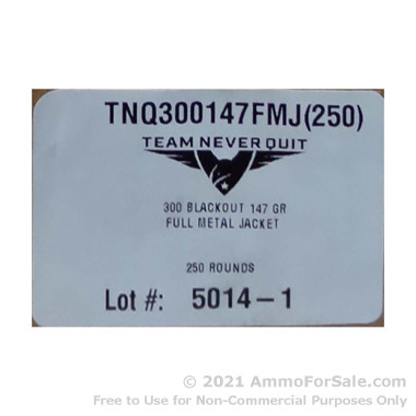 250 Rounds of 147gr FMJ .300 AAC Blackout Ammo by Team Never Quit