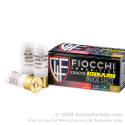 10 Rounds of  00 Buck 12ga Ammo by Fiocchi
