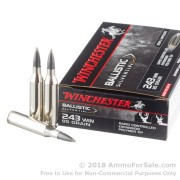 20 Rounds of 95gr Polymer Tipped .243 Win Ammo by Winchester Ballistic SilverTip