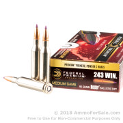 20 Rounds of 95gr Nosler Ballistic Tip .243 Win Ammo by Federal Vital-Shok