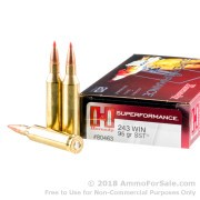 20 Rounds of 95gr SST .243 Win Ammo by Hornady