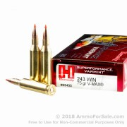 20 Rounds of 75gr V-MAX .243 Win Ammo by Hornady