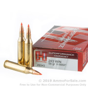 20 Rounds of 58 Grain V-MAX .243 Win Ammo by Hornady Superformance Varmint
