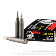 20 Rounds of 75gr HP .223 Ammo by Wolf