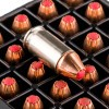 View of Hornady .380 ACP ammo rounds
