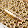 View of Winchester 5.56x45 ammo rounds